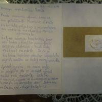 Delavnica KVAČKANJE, 12. - 19.02.2016, Simonov zaliv