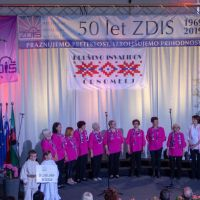 21. revija pevskih zborov društev invalidov Zveze delovnih invalidov Slovenije, Črnomelj, 11.5.2019