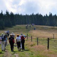 DI Slovenj Gradec: 28. planinski dan invalidov - Kope