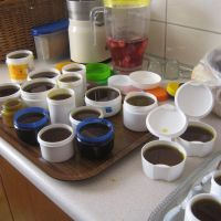 Delavnica »Spoznavanje in uporaba zdravilnih zelišč«