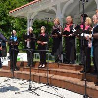 MDI Domžale, Invalidski pevski zbor