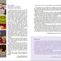 Ob 50. letnici delovanja ZDIS - Razstava ročnih in umetniških del invalidov Zveze delovnih invalidov Slovenije z mednarodno udeležbo
